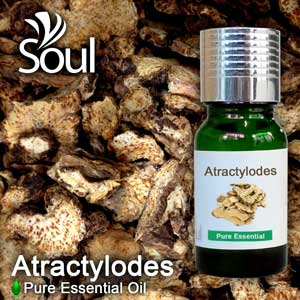Pure Essential Oil Atractylodes - 10ml